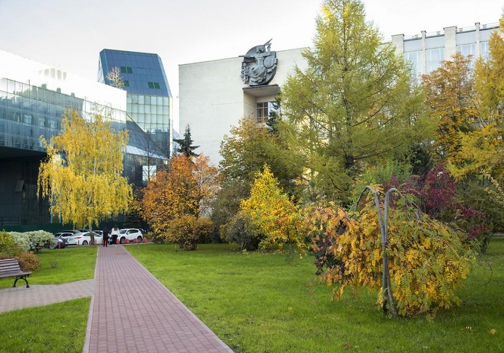 Социологи РАНХиГС: треть россиян причастна к «теневому» рынку труда